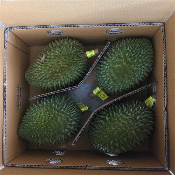 泰国鲜榴莲冷链进入中国市场案例
