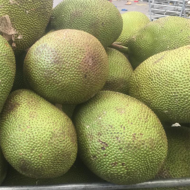泰国菠萝蜜