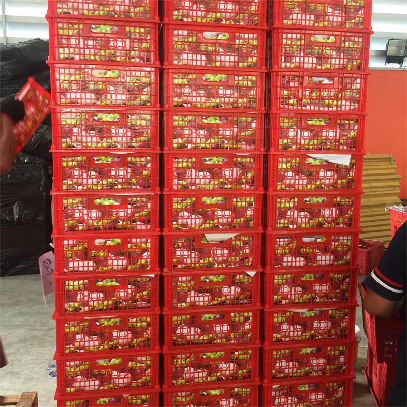 全程冷链进口泰国山竹案例
